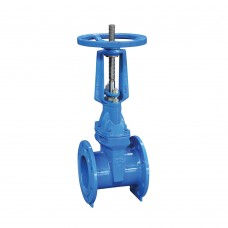 Resiliant Seated Gate Valve - RVRX (PN16)